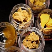 buy cannabis shatter concentrate